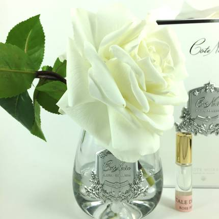 Perfumed Tea Rose - White Clear