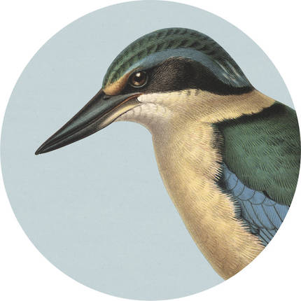 Cork Backed Placemat - Blue Kingfisher