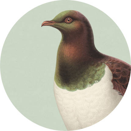 Cork Backed Placemat - Green Kereru