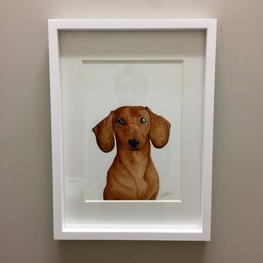 For Me by Dee - Duke the Dachshund