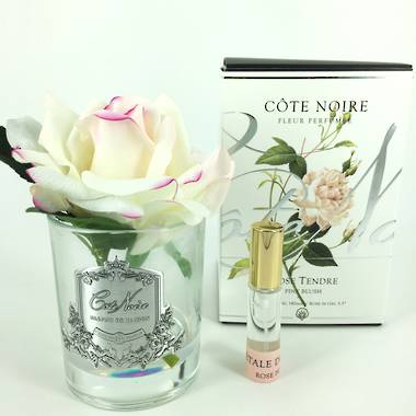 Perfumed Rose in Bloom - Pink Blush Clear